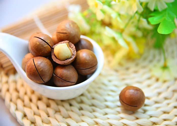 Những món ngon được chế biến từ hạt Mắc Ca bạn nên biết
